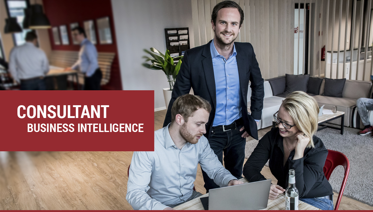 Consultant Business Intelligence