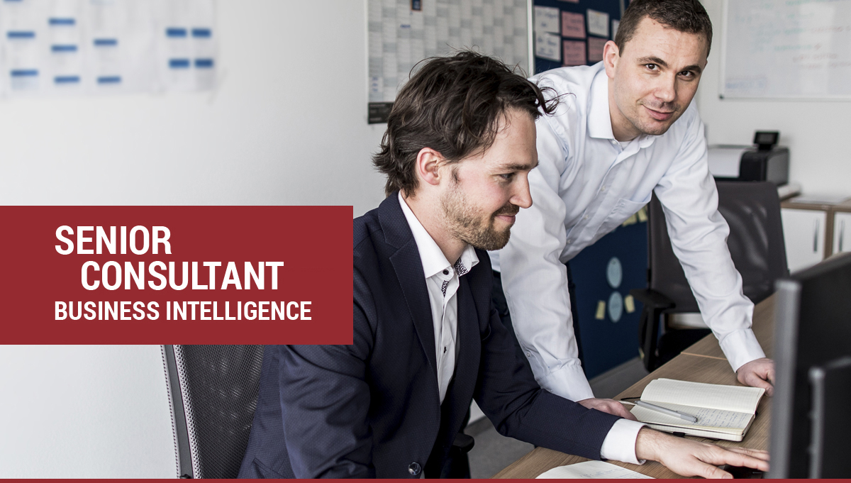 Senior Consultant Business Intelligence
